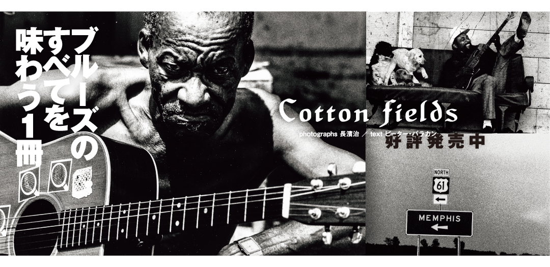Cotton Fileds